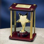 Brass Star Enclosed in Glass Box Achievement Awards